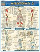 Anatomy 2 Quick Study Barchart